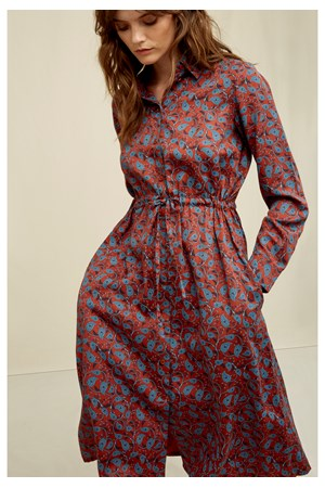 Aislinn Paisley Shirt Dress