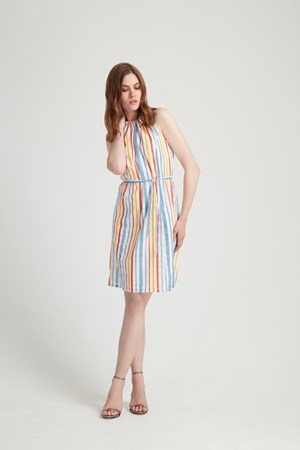 Bryony Stripe Dress in Multi Coloured